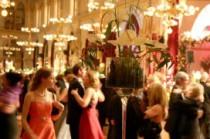 Photo Gallerie: Dîner Dansant, Mariage, etc.